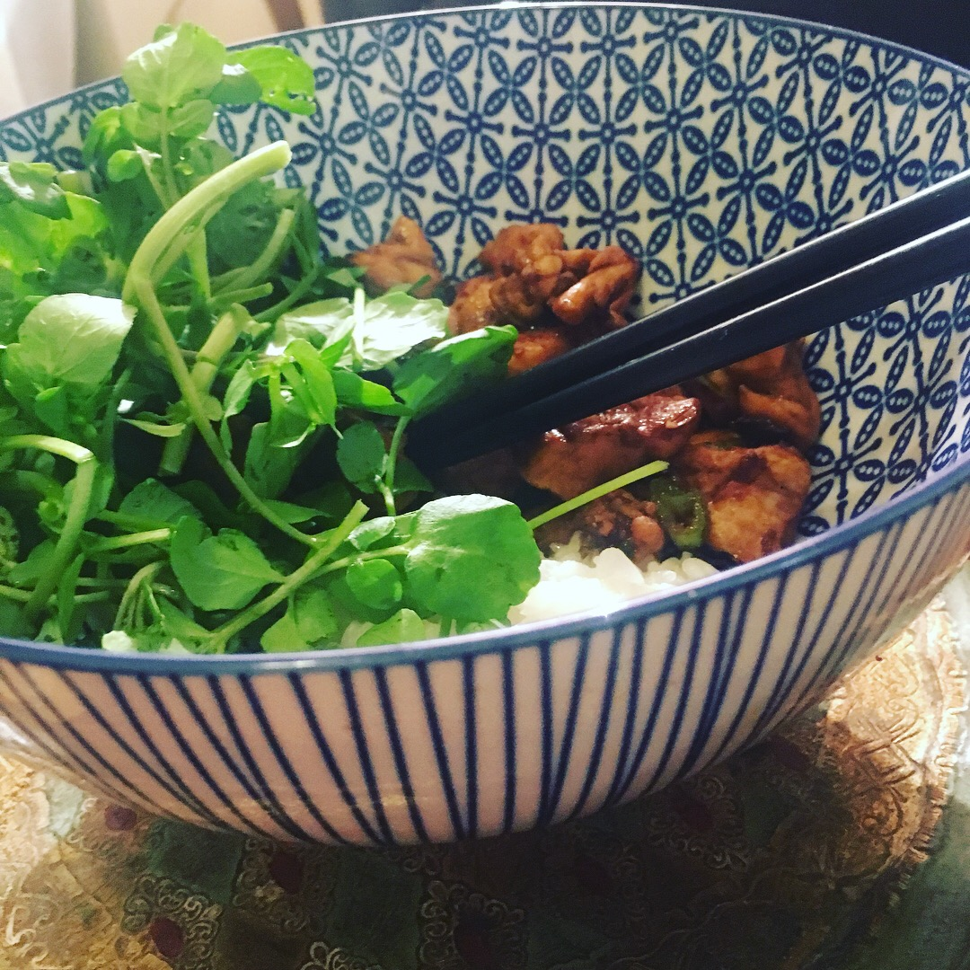 SW recipe: Teriyaki chicken donburi